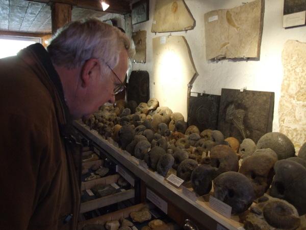 Ede in seiner Fossilien-Sammlung